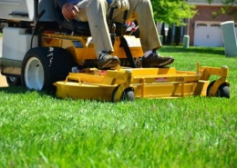 Kenton Brothers: How mowing can affect your home security